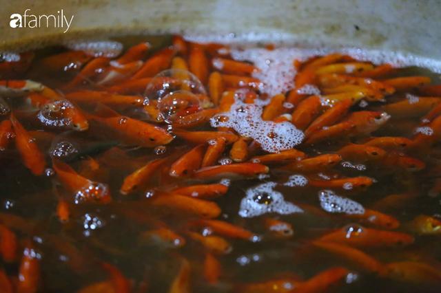 Ngày ông Công ông Táo, chợ cá lớn nhất Hà Nội cháy hàng cá chép từ rạng sáng - Ảnh 6.