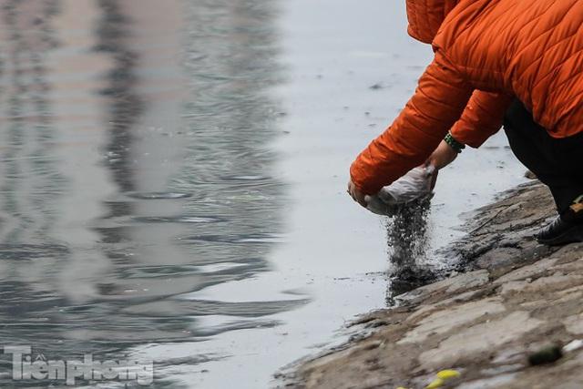Cá chép vàng tiễn ông Táo vừa thả đã chết nổi ở hồ Hoàng Cầu - Ảnh 6.