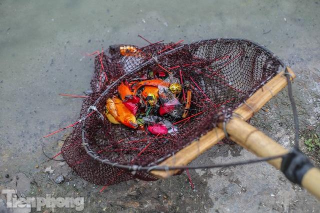 Cá chép vàng tiễn ông Táo vừa thả đã chết nổi ở hồ Hoàng Cầu - Ảnh 10.