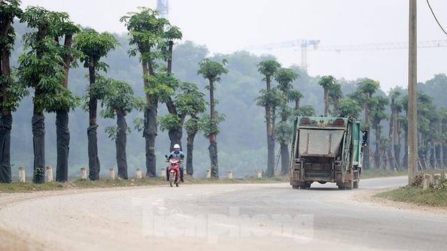 Hàng hoa sữa chuyển từ Hà Nội lên bãi rác Nam Sơn giờ ra sao? - Ảnh 3.