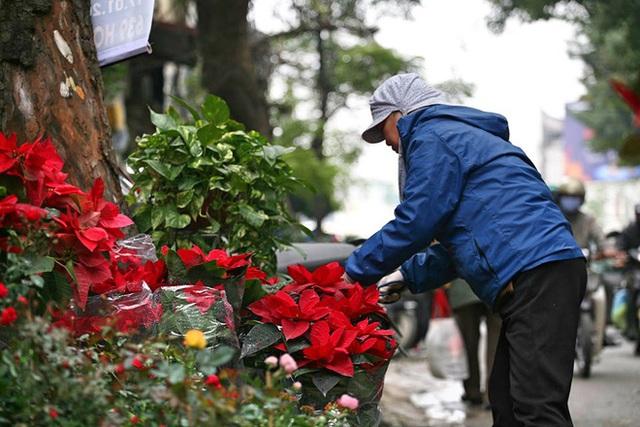 Mặc thời tiết mưa rét, người dân chen chân mua hoa Tết tại chợ hoa lâu đời nhất Hà Nội - Ảnh 12.