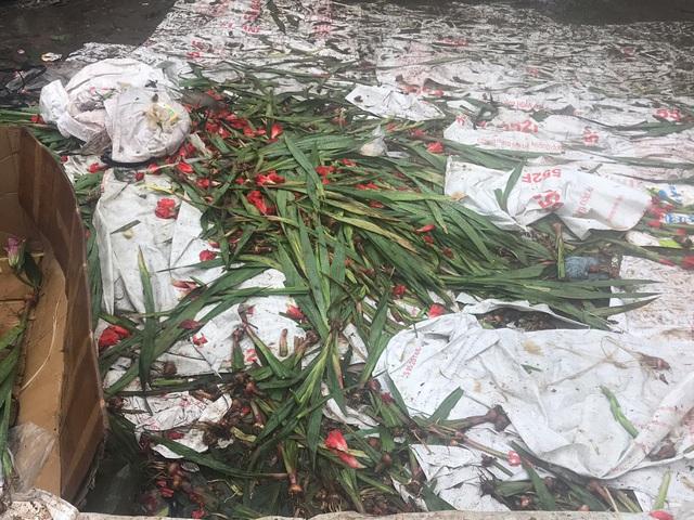 Chiều 30 Tết: Đào đại hạ giá 50.000 đồng/cành vẫn vắng bóng người mua, tiểu thương ngậm ngùi vứt lên xe rác - Ảnh 7.