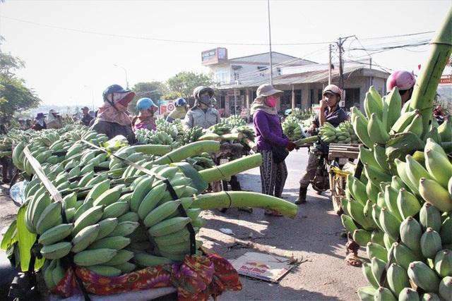 Cận cảnh chợ chuối mật mốc lớn nhất miền Trung ngày cận Tết - Ảnh 6.