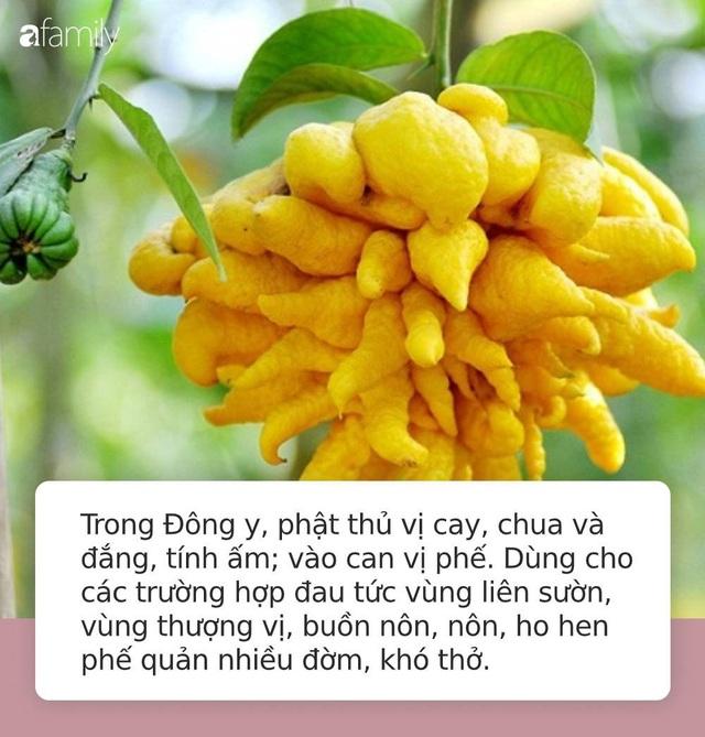Thứ quả linh thiêng mệnh danh là bàn tay của Phật trên bàn thờ ngày Tết nếu sử dụng theo cách này có thể chữa được rất nhiều bệnh tật - Ảnh 2.
