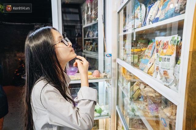 Năm Canh Tý, người trẻ tìm mua chuột hamster để giảm stress và cầu chúc may mắn  - Ảnh 13.