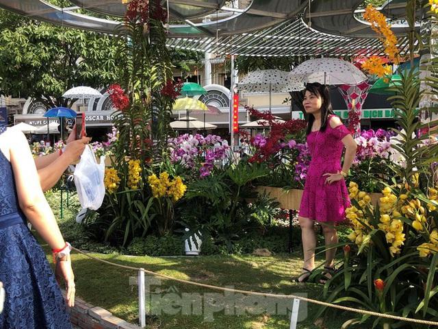 Vì sao tiểu cảnh ở phố đi bộ Nguyễn Huệ tả tơi - Ảnh 25.