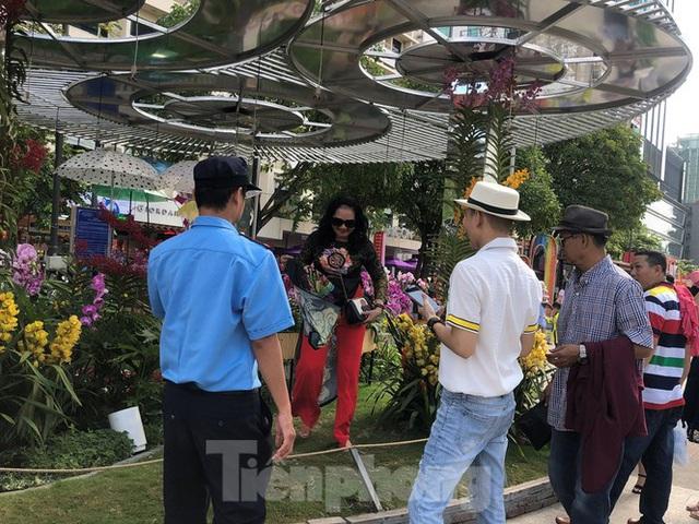 Vì sao tiểu cảnh ở phố đi bộ Nguyễn Huệ tả tơi - Ảnh 26.