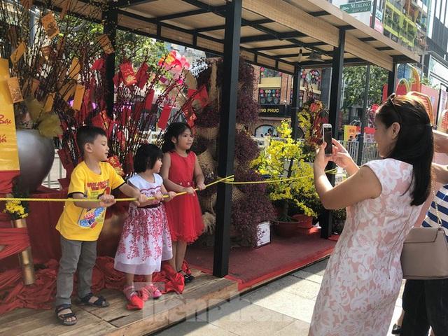Vì sao tiểu cảnh ở phố đi bộ Nguyễn Huệ tả tơi - Ảnh 9.
