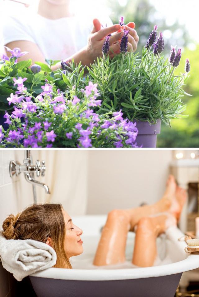 Không chỉ mang ý nghĩa phong thủy, trang trí căn phòng, những các loại cây dưới đây còn giúp cho lọc sạch không khí, cải thiện sức khỏe - Ảnh 7.