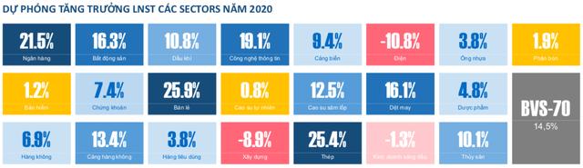 Chiến lược đầu tư 2020: Bớt lạc quan về ngân hàng, ưu tiên hơn lĩnh vực sản xuất, chế biến chế tạo - Ảnh 1.