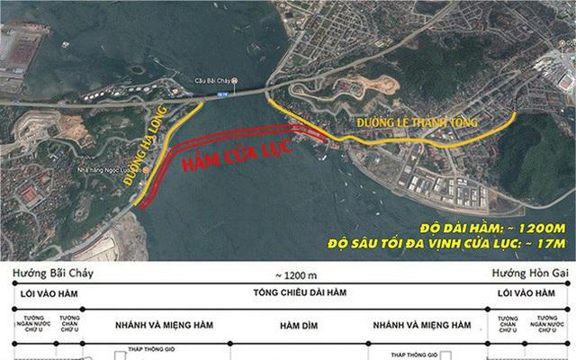 Có dừng dự án hầm đường bộ gần 10.000 tỷ đồng qua vịnh Cửa Lục (Quảng Ninh)? - Ảnh 1.