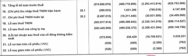 HAGL Agrico (HNG) báo lỗ ròng hơn 2.308 tỷ đồng do nguồn thu thấp và xử lý tài sản xấu - Ảnh 2.
