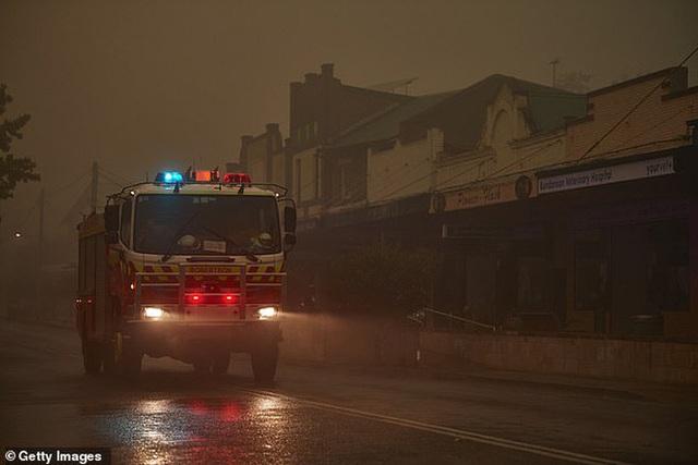Những tin tức mát lòng giữa bão lửa kinh hoàng, thắp sáng thêm niềm tin và sự lạc quan cho người dân Úc - Ảnh 6.