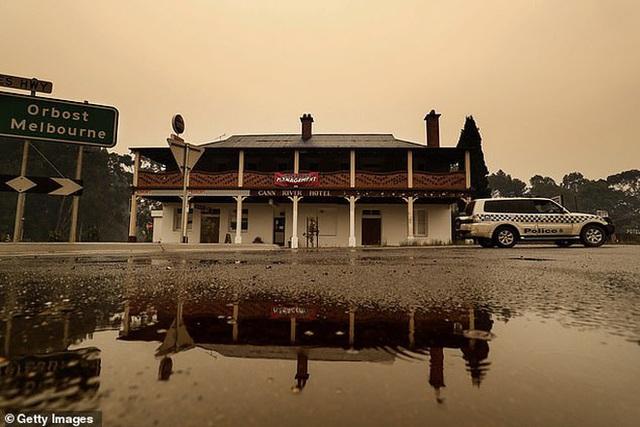 Những tin tức mát lòng giữa bão lửa kinh hoàng, thắp sáng thêm niềm tin và sự lạc quan cho người dân Úc - Ảnh 7.