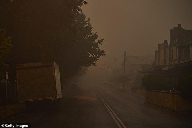Những tin tức mát lòng giữa bão lửa kinh hoàng, thắp sáng thêm niềm tin và sự lạc quan cho người dân Úc - Ảnh 9.