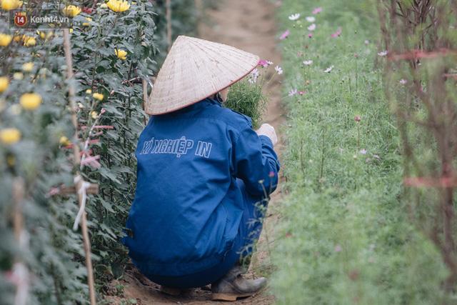Đào Nhật Tân tấp nập xuống phố, người dân thích thú mua thưởng thức không khí Tết sớm - Ảnh 8.