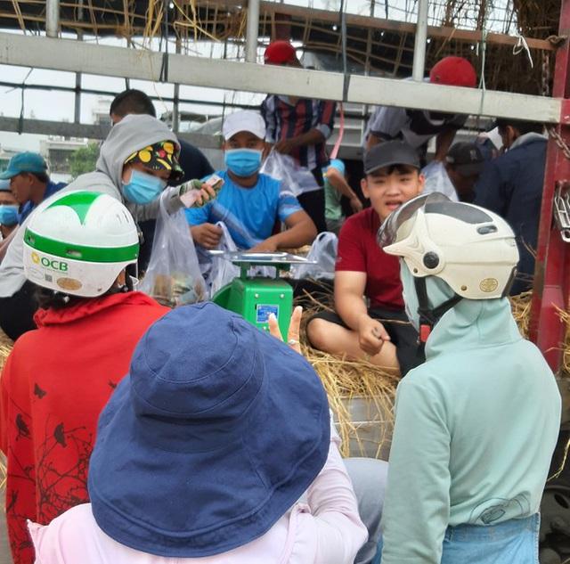 Người Sài Gòn giải cứu dưa giúp nông dân Bình Định - Ảnh 4.