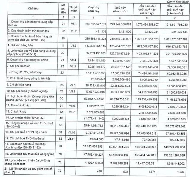 Chi phí giá vốn tăng cao, Dowaco (DNW) báo lợi nhuận quý 4 sụt giảm 13% cùng kỳ - Ảnh 1.