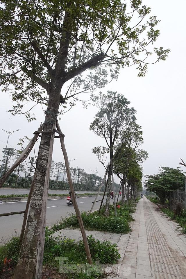 Cận cảnh tuyến đường nghìn tỷ nối liền Vành đai 3 với Cầu Bươu vừa thông xe - Ảnh 7.