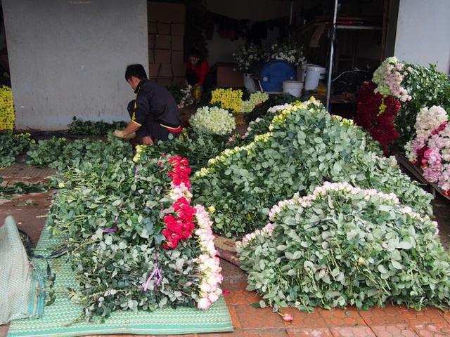 Giá hoa hồng Đà Lạt giảm sốc mùa Valentine - Ảnh 2.