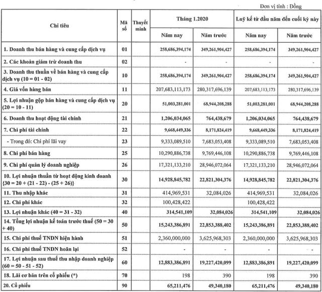 TNG giảm hơn 33% lãi tháng đầu năm 2020 xuống còn 13 tỷ đồng - Ảnh 1.