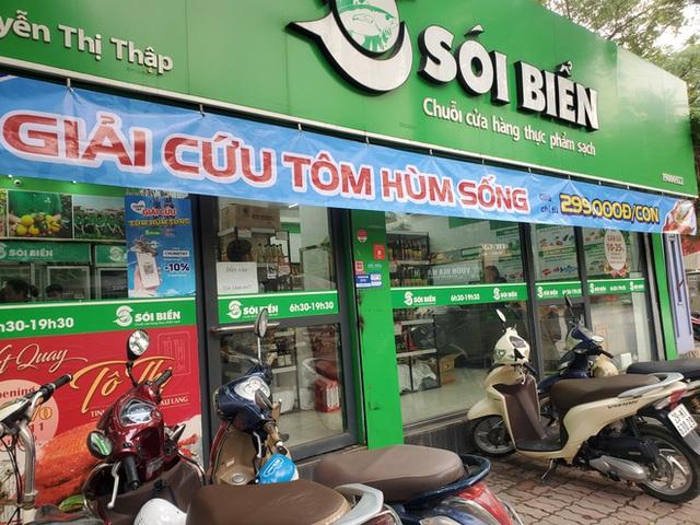 """Giải cứu tôm hùm ở Hà Nội: Hàng đồng giá 299.000 đồng/con """"cháy"""" hàng - Ảnh 1."""