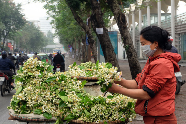 Kiếm bạc triệu nhờ bán hoa theo lạng trên phố Hà Nội - Ảnh 3.