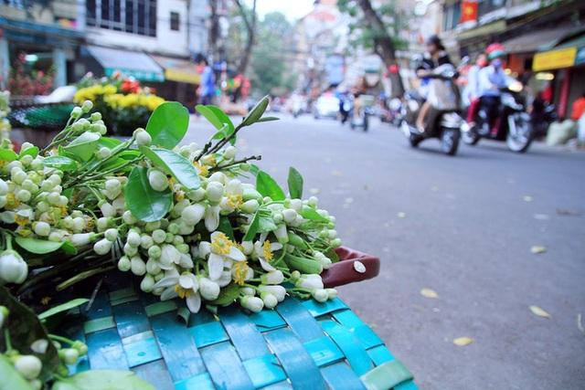 Kiếm bạc triệu nhờ bán hoa theo lạng trên phố Hà Nội - Ảnh 10.