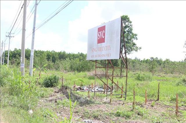 Khu đô thị Sinh Việt 331ha tại Bình Chánh nằm trong tầm ngắm rà soát của UBND Tp.HCM - Ảnh 1.