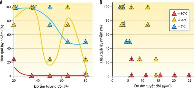 """Chuyện kể từ phòng thí nghiệm nghiên cứu virus cúm: Những đặc tính kỳ lạ của """"con cúm - Ảnh 5."""