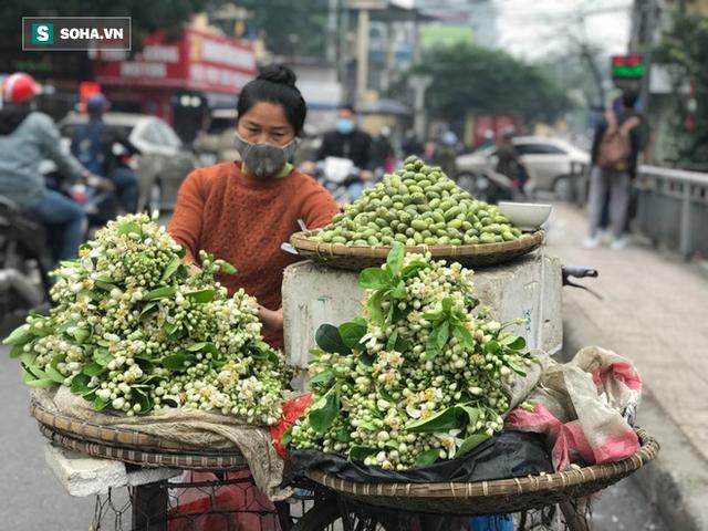 Kiếm tiền triệu mỗi ngày nhờ bán rong quả xanh đầu mùa - Ảnh 3.