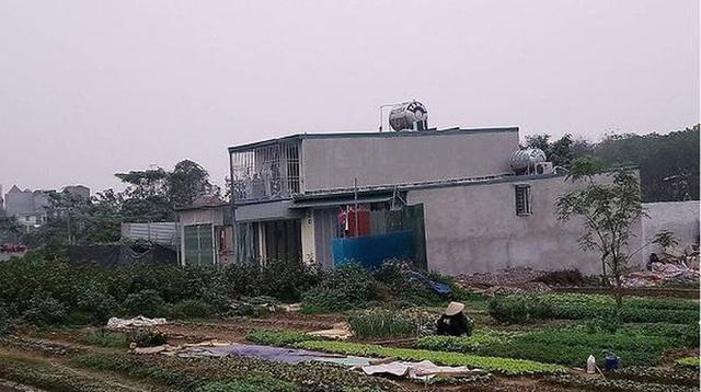 Hà Nội lệnh xử lý tình trạng nở rộ xây nhà trên đất nông nghiệp - Ảnh 1.