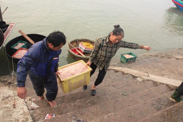 Ngư dân Hà Tĩnh hốt lộc trời đầu năm, kiếm tiền triệu sau vài giờ ra khơi - Ảnh 2.