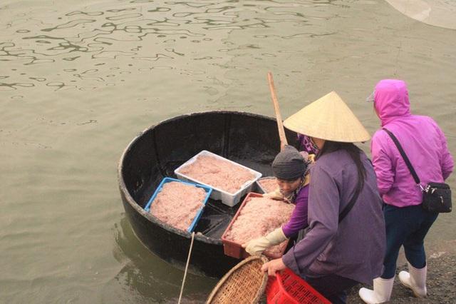 Ngư dân Hà Tĩnh hốt lộc trời đầu năm, kiếm tiền triệu sau vài giờ ra khơi - Ảnh 10.
