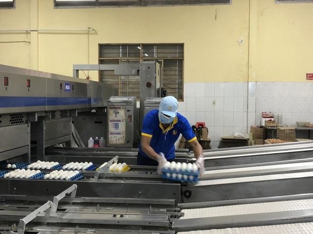 Bí thư Tỉnh ủy Đồng Tháp dẫn đoàn nông dân lên TP HCM tìm nơi tiêu thụ trứng vịt  - Ảnh 3.