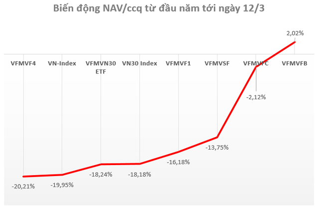 Hàng loạt quỹ do VietFund Management (VFM) quản lý giảm sâu, có quỹ giảm hơn 20% từ đầu năm - Ảnh 1.