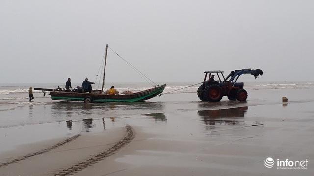 Được mùa cá trích, ngư dân xứ Thanh thu chục triệu mỗi ngày - Ảnh 2.