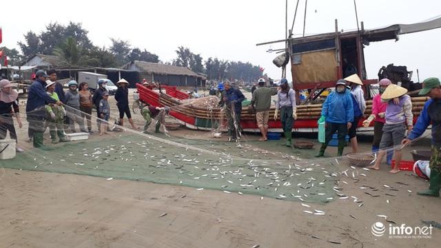 Được mùa cá trích, ngư dân xứ Thanh thu chục triệu mỗi ngày - Ảnh 13.