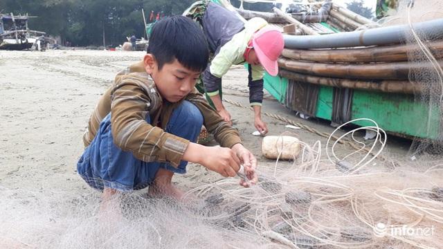 Được mùa cá trích, ngư dân xứ Thanh thu chục triệu mỗi ngày - Ảnh 9.