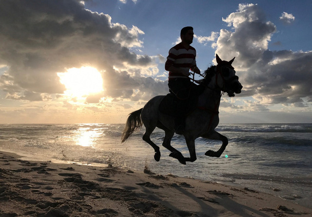 Lao đầu đi tìm ngựa quý, chàng trai nhận được lời khuyên bất ngờ của vị cao niên, hội công sở nịnh nọt nghe xong cũng tỉnh ngộ - Ảnh 3.
