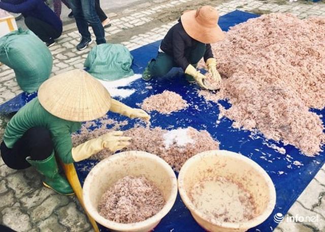 Quảng Bình: Ruốc biển vào gần bờ, ngư dân xúc mệt nghỉ, kiếm 10 triệu đồng/đêm - Ảnh 1.
