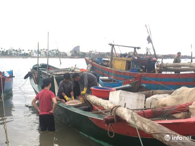 Quảng Bình: Ruốc biển vào gần bờ, ngư dân xúc mệt nghỉ, kiếm 10 triệu đồng/đêm - Ảnh 2.