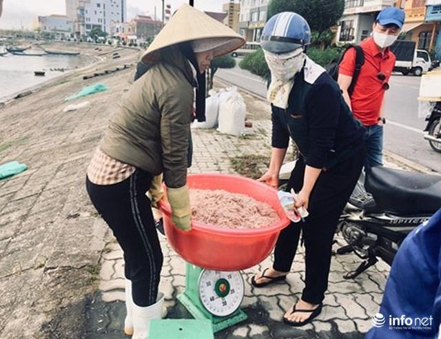 Quảng Bình: Ruốc biển vào gần bờ, ngư dân xúc mệt nghỉ, kiếm 10 triệu đồng/đêm - Ảnh 4.
