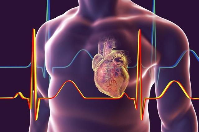 Cứ 4 người mắc thì có 1 người chết vì bệnh tim: Thay đổi ngay chế độ ăn để bảo vệ bản thân và gia đình! - Ảnh 2.