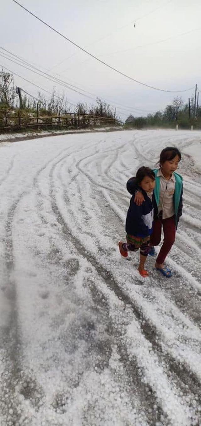 Mưa đá rơi trắng trời, trắng đất ở Lai Châu - Ảnh 10.