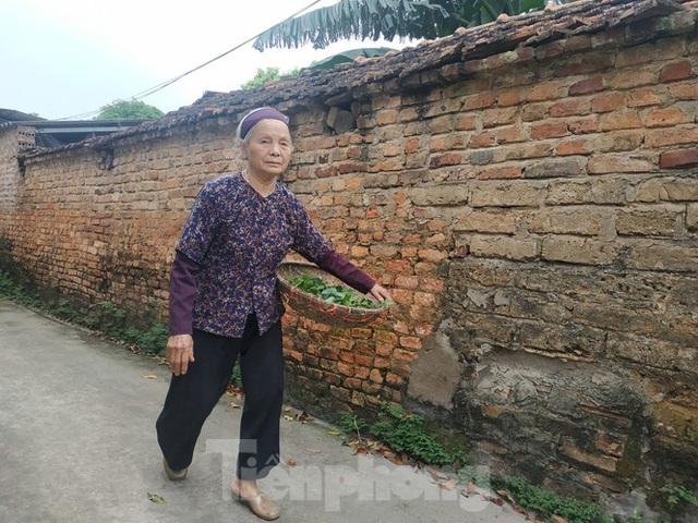 Cụ bà bán rau 79 tuổi ủng hộ tiền chống dịch COVID-19 - Ảnh 2.