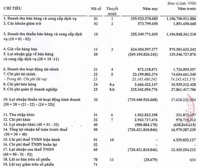 Sau thông báo sắp phá sản, Bao bì Nhựa Sài Gòn (SPP) báo lỗ 2019 lên tới 720 tỷ đồng - Ảnh 1.