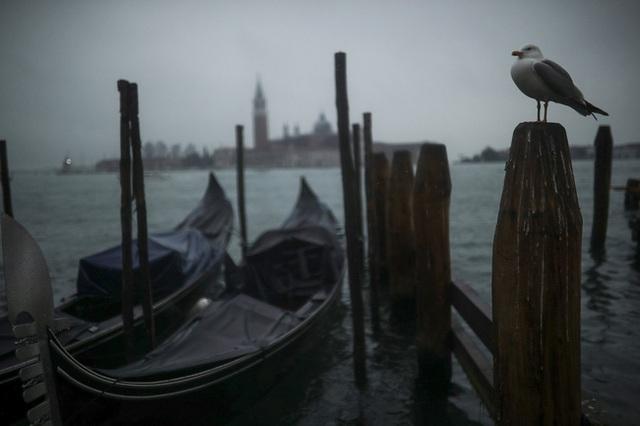 Chùm ảnh thánh địa tình yêu của nước Ý thời dịch Covid-19: Thành phố tình yêu đánh mất linh hồn khi du khách chạy trốn virus corona - Ảnh 3.