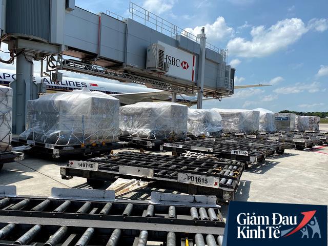 Nguồn thu chở khách eo hẹp, Vietnam Airlines chuyển hướng sang hàng trăm chuyến bay chỉ chở hàng hóa - Ảnh 1.