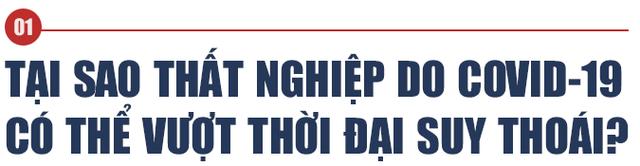 Kinh tế gia người Việt tại Mỹ: Việt Nam không nên kích cầu như các nước giàu! - Ảnh 1.